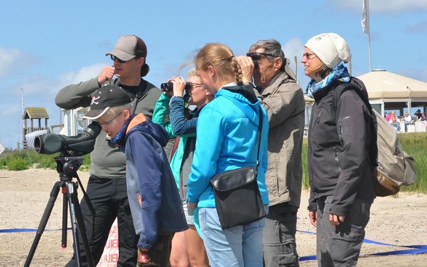 Aktion zum Wattenmeer-Geburtstag